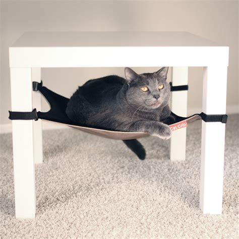 Cat Crib by Cat Crib So That S Cool