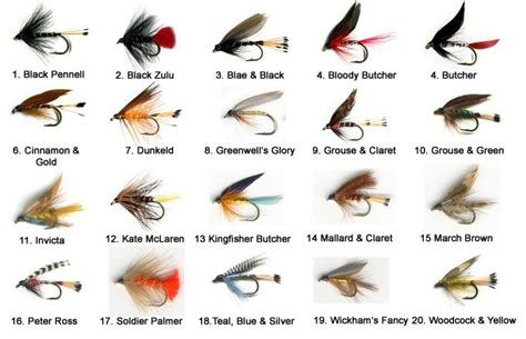 fly pattern types the essential loch trout fly selection the essential fly