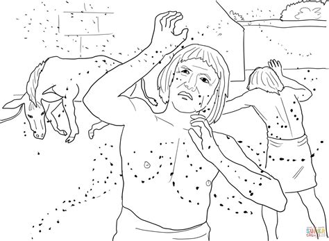frog plague coloring page plague of lice or gnats coloring online super coloring