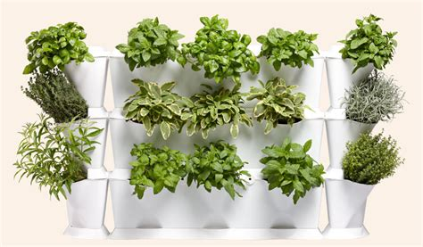 Mini Garden Vertical Minigarden Vertical Configurations Minigarden Us