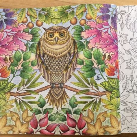 secret garden coloring book colored pencil johanna basford picture by nergiz g 252 lburun colouring