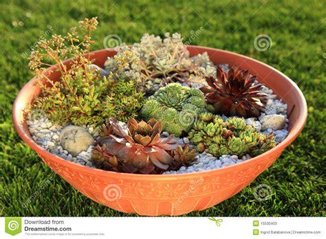 small rock garden images small rock garden stock photos image 15530403