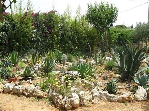 costruire giardino roccioso giardini rocciosi fai da te giardinaggio