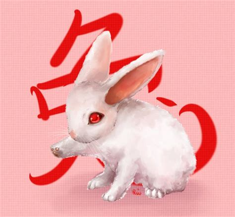 new year for rabbit new year rabbit wallpaper animal