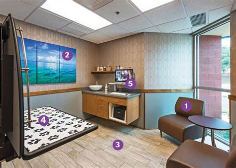 care and comfort veterinary hospital 34 best images about exam rooms veterinary hospital