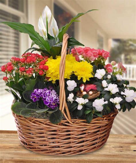 Blooming Garden Basket In Minneapolis Mn Schaaf Floral Garden Flower Arrangements