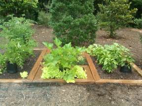 herb gardens herb gardening for beginners light force network