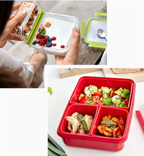 things to watch out for when buying a house lunchboxes sandwich boxes emsa