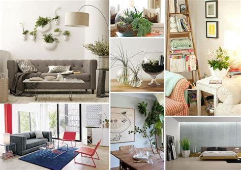 floor plants home decor decorating with houseplants