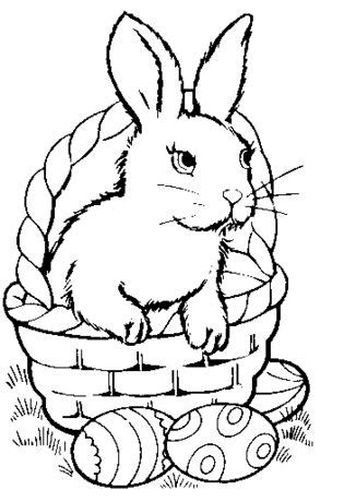 25 best ideas about bunny coloring pages on pinterest