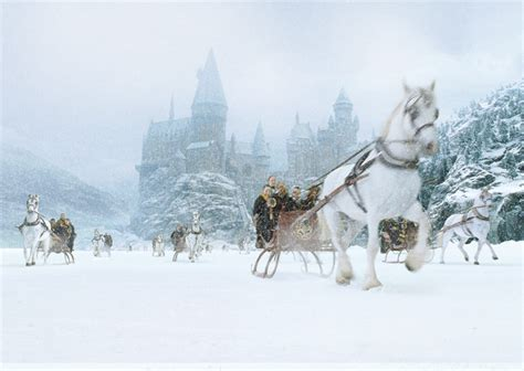 harry potter winter at 1406376086 winter cavalli hogwarts paesaggi image search hogwarts and cavalli