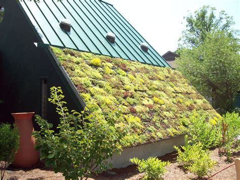 virginia living museum living green gardens