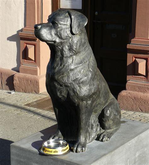 rottweiler statue rottweiler bilder rottweiler statue vor dem stadtmuseum