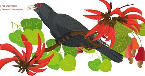 Babol New Year Vv sri lankan style koha