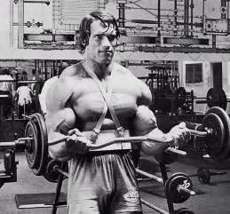 Golds Bench Press Bodybuilding Pictures Of Arnold Schwarzenegger Gallery 4