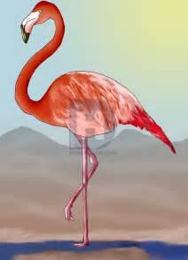how to draw a flamingo step by step birds animals free