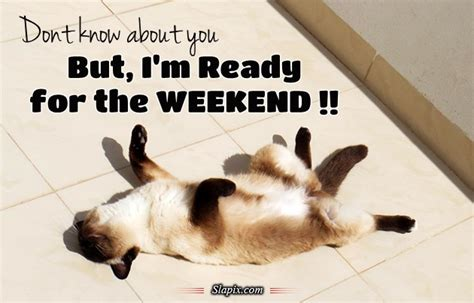 Im Back Ready For A by Ready For The Weekend Quotes Quotesgram