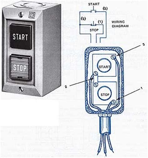 starting  phase squirrel cage induction motors