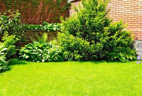 imagenes de jardines con gramineas im 225 gene experience 9 fotos de jardines dise 241 o exterior
