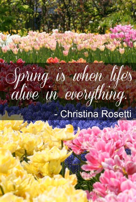 ready for spring ready for spring quotes quotesgram