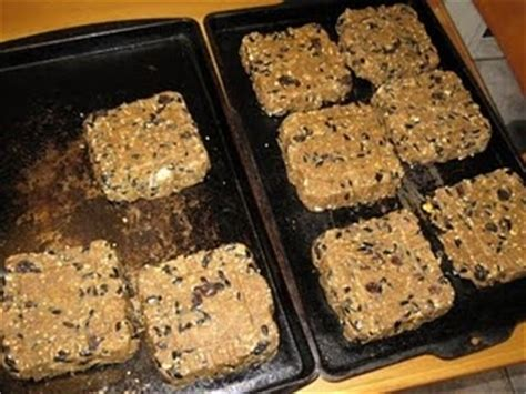 how to make suet cakes