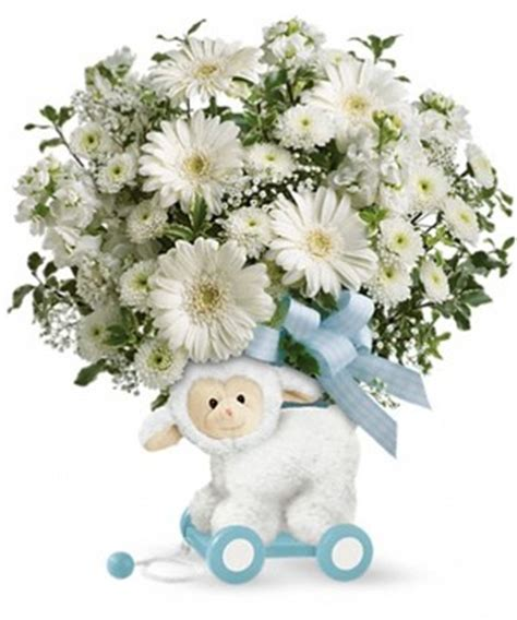 Baby Flowers Delivery by New Baby Flowers Same Day Delivery In Denver Colorado