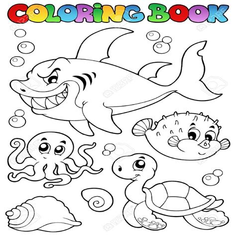 imagenes animales acuaticos y terrestres fresco dibujos de animales terrestres y acuaticos para