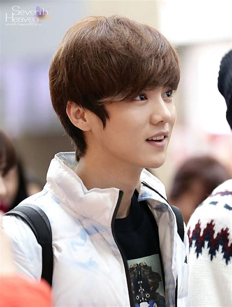biography of exo luhan 71 best images about exo funny on pinterest
