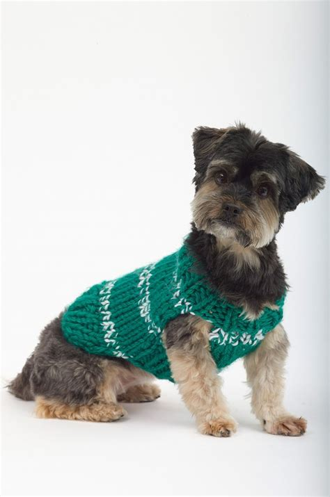 knitting pattern for westie dog coat top 5 free dog sweater knitting patterns yarns patterns
