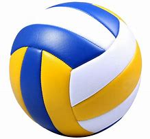 Image result for Volleyball