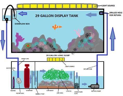 sump diagram need advice on my layout saltwaterfish forum