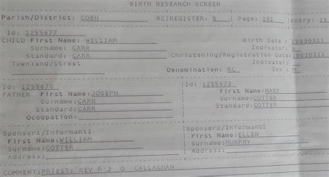 Cork County Ireland Birth Records Joseph Carr