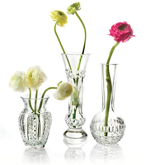 Single Stem Vases by Waterford Fleurology Single Stem Vase