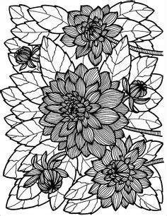 noodle and doodle sock flowers 1000 images about flower coloring 2 on dovers