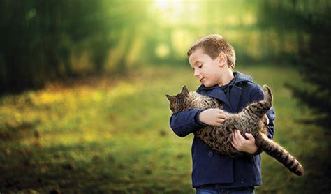 healing animals cummings school of veterinary medicine