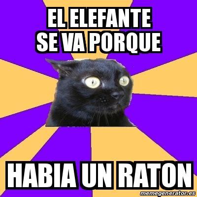 Anxiety Cat Meme Generator - meme anxiety cat el elefante se va porque habia un raton
