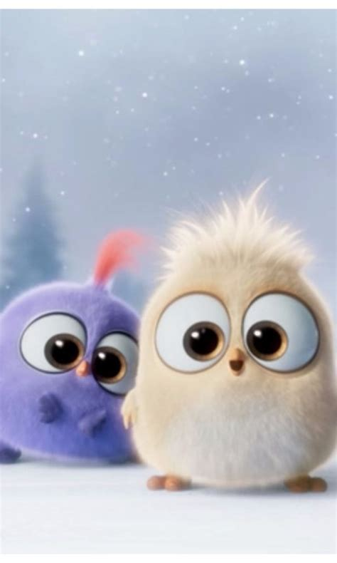 cutest  angry birds   wallpapers desktop background