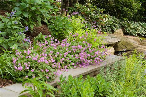 Perennial Garden Perennial Gardens Cording Landscape Design