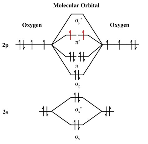 molecular orbital diagram for o2 16 4a dioxygen chemistry libretexts