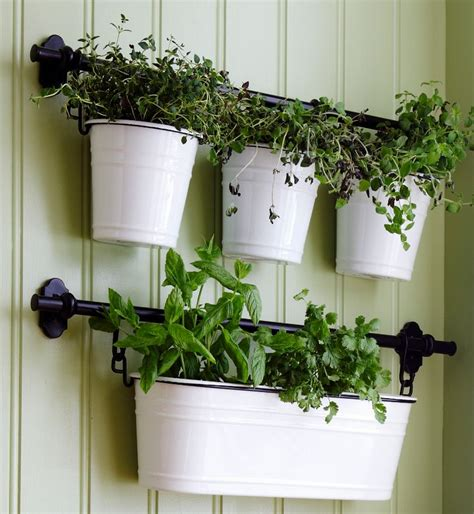 fintorp condiment holder works      planter