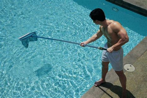 pool maintenance tips pool maintenance tips home decoration family