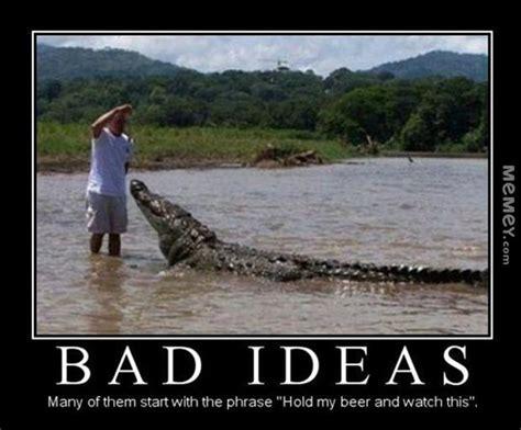 Crocodile Meme - crocodile memes funny crocodile pictures memey com