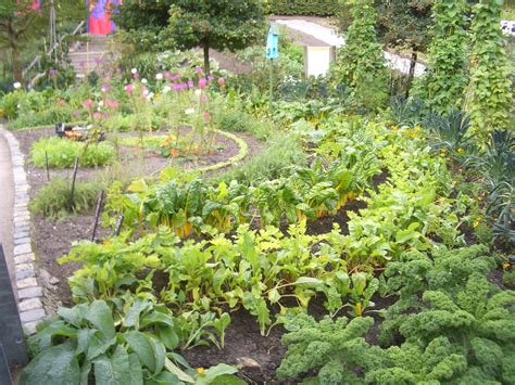 Edible Gardening   Verdant Earth