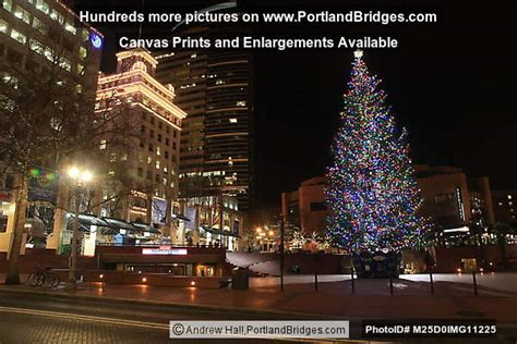 images of portlands xmas trees 2012 pioneer courthouse square tree portland oregon photo m25d0img11225