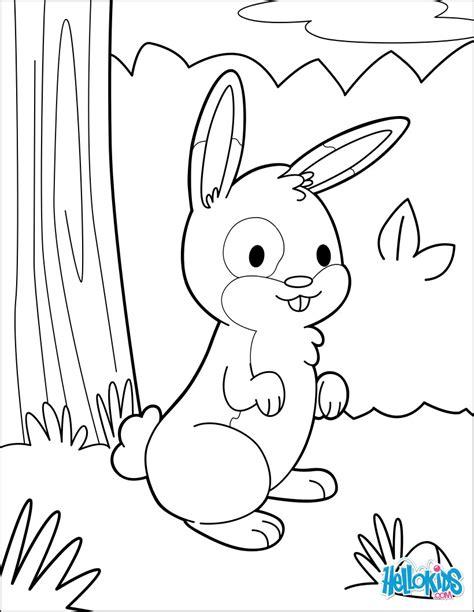 imagenes de jardines bonitos para colorear dibujos para colorear conejo en el jard 237 n es hellokids com