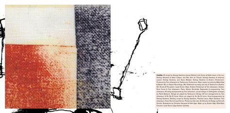 Kaset Solveig Sandnes Analog vagabond squaw solveig sandnes design kenneth schultz