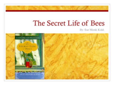 the secret of bees book report the secret of bees study guide answer key