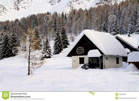 house snow house with the snow stock image image of pine estate