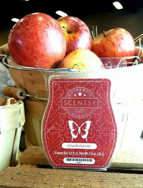 apple scents 380 best scentsy images on pinterest scentsy boss babe