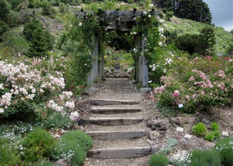 berkeley botanical garden 187 rentals